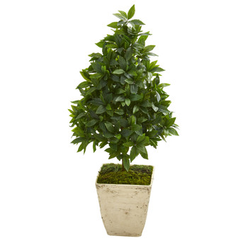 34 Sweet Bay Cone Topiary Artificial Tree in Country White Planter - SKU #9926