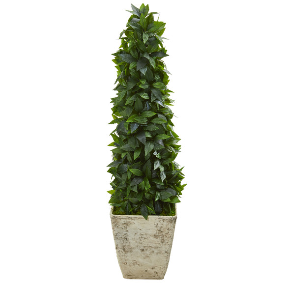 38 Sweet Bay Cone Topiary Artificial Tree in Country White Planter - SKU #9935