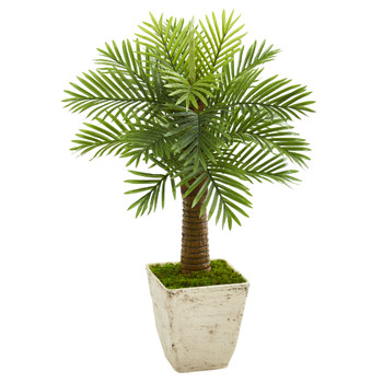 38 Robellini Palm Artificial Tree in Country White Planter - SKU #9937