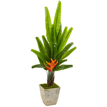 55 Travelers Palm Artificial Tree in Country White Planter - SKU #9984