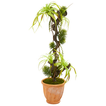 45 Tillandsia Artificial Plant in Terra-Cotta Planter - SKU #9988