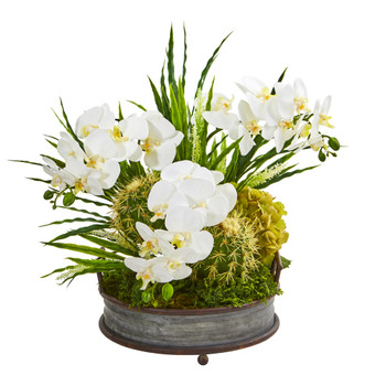 Phalaenopsis Orchid and Cactus Artificial Arrangement - SKU #A1003