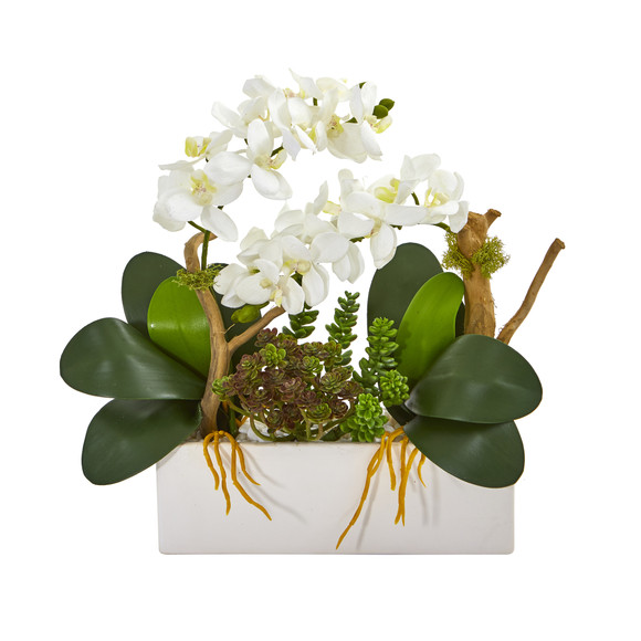 15 Phalaenopsis Orchid and Succulent Artificial Arrangement - SKU #A1028-WH