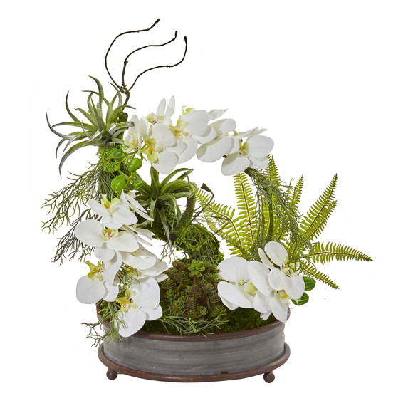 21 Phalaenopsis Orchid Succulent and Fern Artificial Arrangement in Metal Tray - SKU #A1083