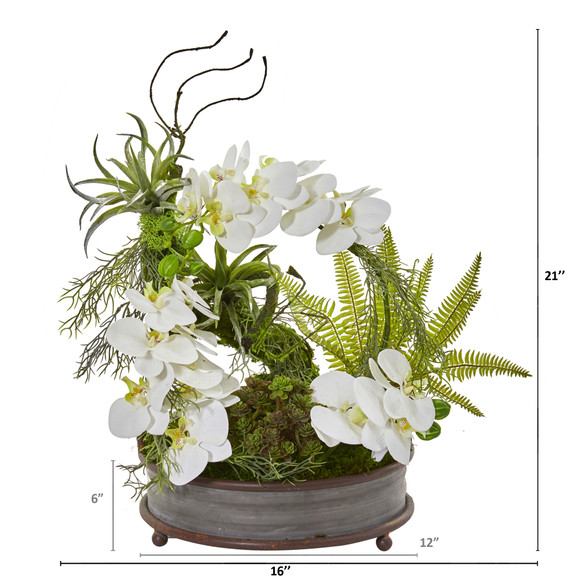 21 Phalaenopsis Orchid Succulent and Fern Artificial Arrangement in Metal Tray - SKU #A1083 - 1