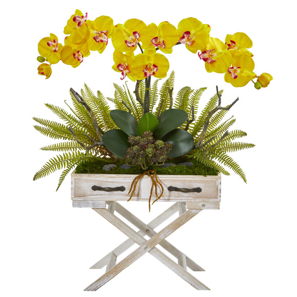 26 Phalaenopsis Orchid Fern and Succulent Artificial Arrangement in Drawer Planter - SKU #A1099 - 4
