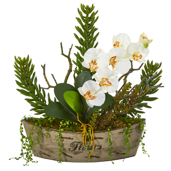 20 Orchid Phalaenopsis and Mix Succulent Artificial Arrangement - SKU #A1171
