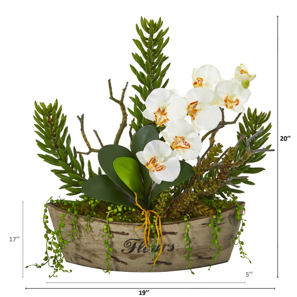 20 Orchid Phalaenopsis and Mix Succulent Artificial Arrangement - SKU #A1171 - 1