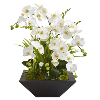 23 Phalaenopsis Orchid and Succulent Artificial Arrangement in Vase - SKU #A1363