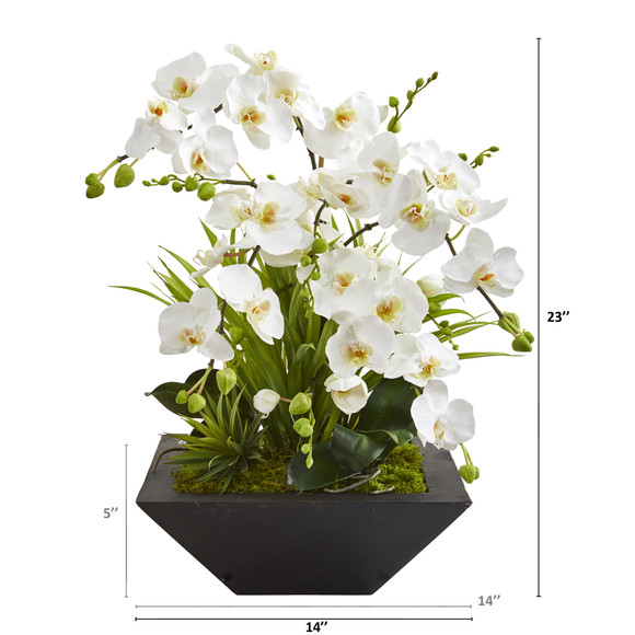 23 Phalaenopsis Orchid and Succulent Artificial Arrangement in Vase - SKU #A1363 - 1