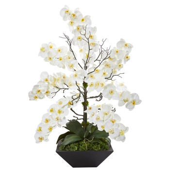 35 Mixed Phalaenopsis Orchid Artificial Arrangement in Black Vase - SKU #A1367
