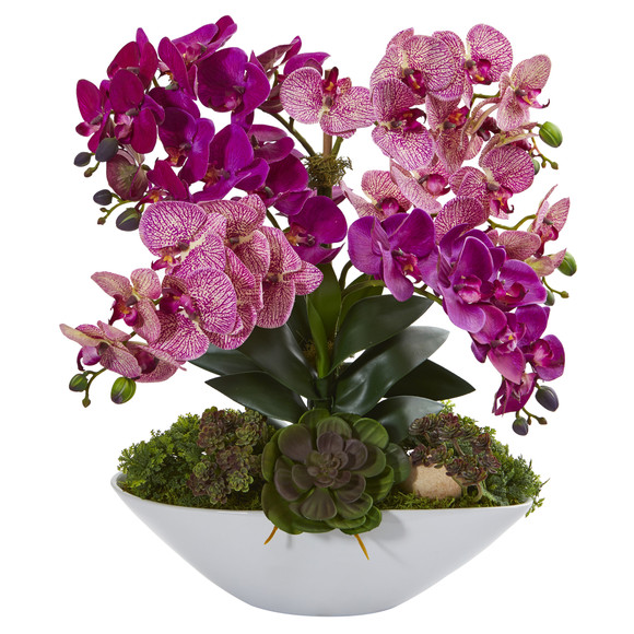 20 Phalaenopsis Orchid and Succulent Artificial Arrangement in White Vase - SKU #A1379
