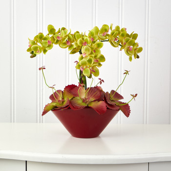 16 Phalaenopsis Orchid and Succulent Artificial Arrangement in Vase - SKU #A1403-GR