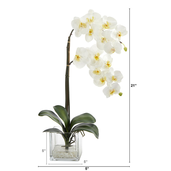 21 Phalaenopsis Orchid Artificial Arrangement in Glass Vase - SKU #A1423 - 1