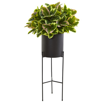 55 Rubber Leaf Artificial Plant in Black Planter with Stand Real Touch - SKU #P1213