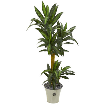 5 Yucca Artificial Plant in Decorative Planter - SKU #P1238