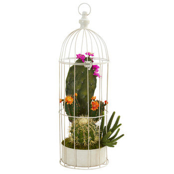 24 Mixed Cactus Succulent Artificial Plant in Decorative Cage - SKU #P1250