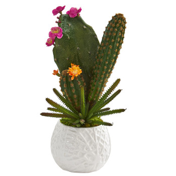 17 Mixed Cactus Artificial Plant in White Planter - SKU #P1286