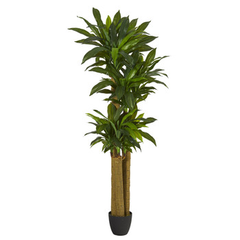 6 Corn Stalk Dracaena Artificial Plant Real Touch - SKU #P1305