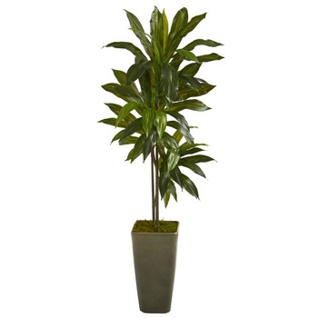 4.5 Dracaena Artificial Plant in Green Planter Real Touch - SKU #P1324