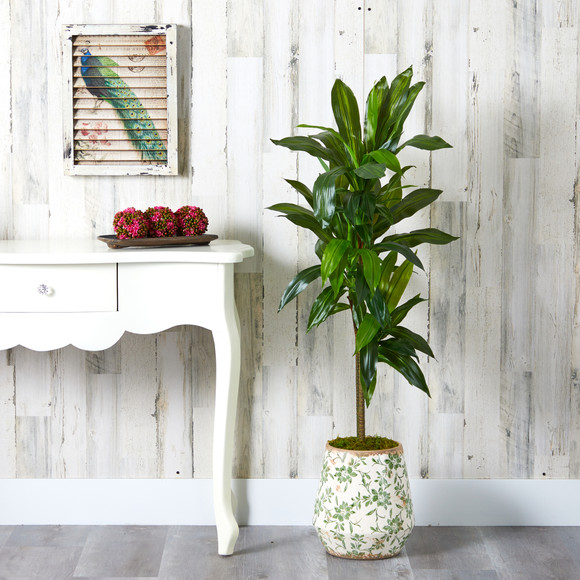 4 Dracaena Artificial Plant in Flower Print Planter Real Touch - SKU #P1326 - 2