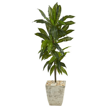 4 Dracaena Artificial Plant in Country White Planter Real Touch - SKU #P1328