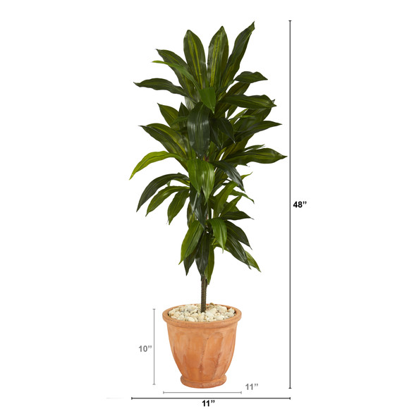 4 Dracaena Artificial Plant in Terra-Cotta Planter Real Touch - SKU #P1329 - 1
