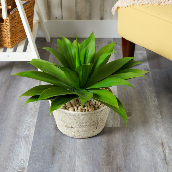 1.5 Agave Succulent Artificial Plant in White Planter - SKU #P1330 - 2