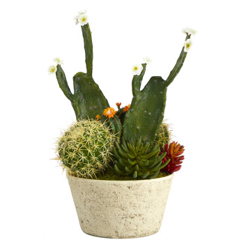 26 Cactus Garden Artificial Plant in White Planter - SKU #P1351