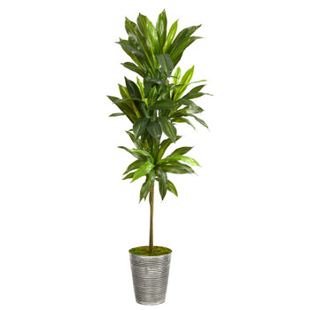 5 Dracaena Artificial Plant in Decorative Tin Planter Real Touch - SKU #P1408