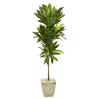 5 Dracaena Artificial Plant in Country White Planter Real Touch - SKU #P1410