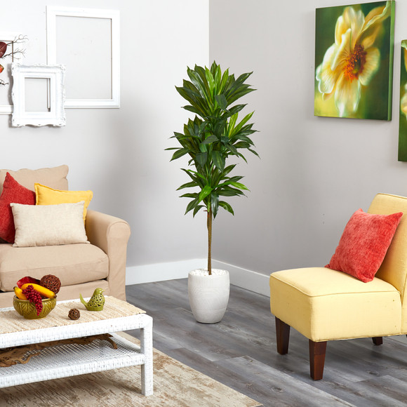 62 Dracaena Artificial Plant in White Planter Real Touch - SKU #P1411 - 2