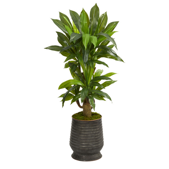 40 Corn Stalk Dracaena Artificial Plant in Ribbed Metal Planter Real Touch - SKU #P1419