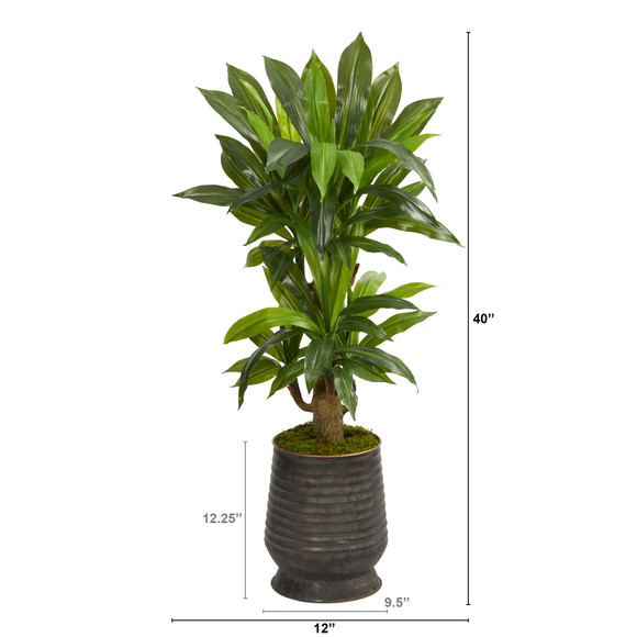 40 Corn Stalk Dracaena Artificial Plant in Ribbed Metal Planter Real Touch - SKU #P1419 - 1