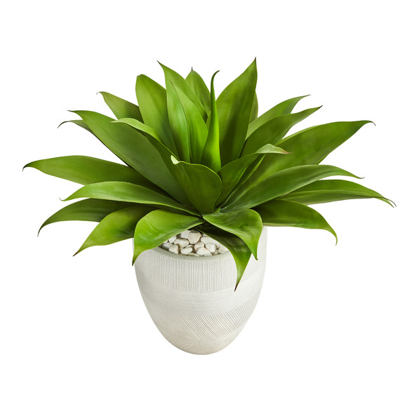 2 Agave Succulent Artificial Plant in White Planter - SKU #P1422 - 3