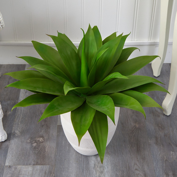 2 Agave Succulent Artificial Plant in White Planter - SKU #P1422 - 5
