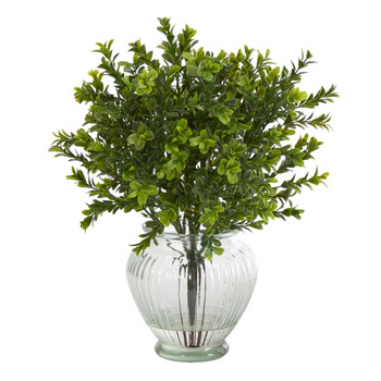 14 Boxwood Artificial Plant in Glass Planter Indoor/Outdoor - SKU #P1438