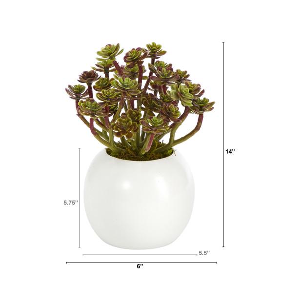 7 Sedum Succulent Artificial Plant in White Planter - SKU #P1439 - 1