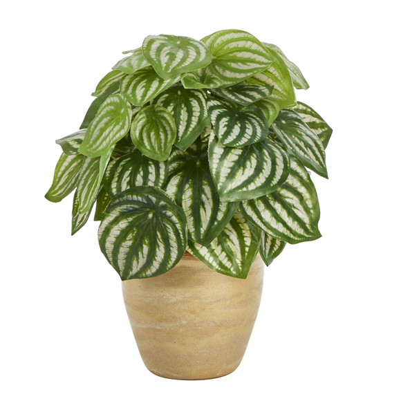 11 Watermelon Peperomia Artificial Plant in Ceramic Planter Real Touch - SKU #P1446