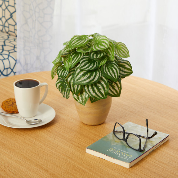11 Watermelon Peperomia Artificial Plant in Ceramic Planter Real Touch - SKU #P1446 - 2