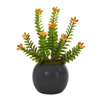 9 Flowering Sedum Succulent Artificial Plant in Black Planter - SKU #P1451