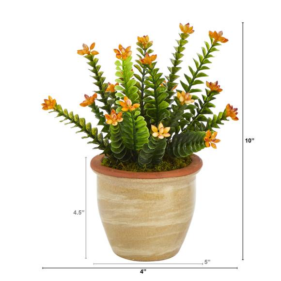 10 Flowering Sedum Succulent Artificial Plant in Ceramic Planter - SKU #P1454 - 1