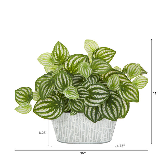 15 Watermelon Peperomia Artificial Plant in White Tin Planter Real Touch - SKU #P1478 - 1