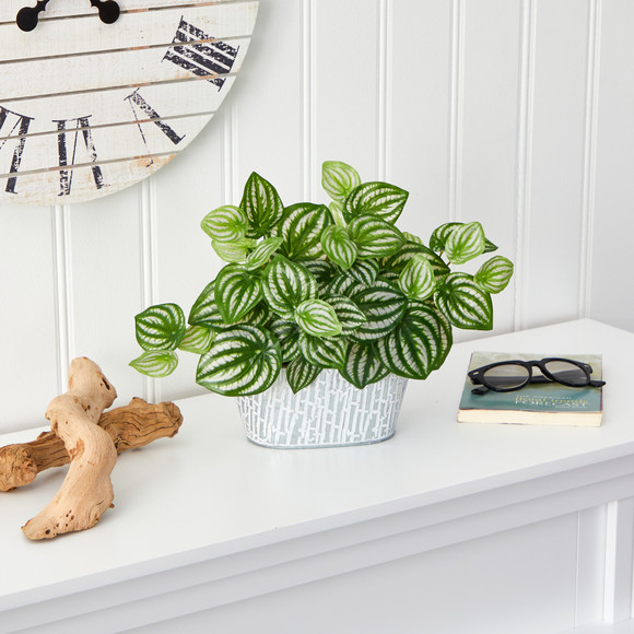 15 Watermelon Peperomia Artificial Plant in White Tin Planter Real Touch - SKU #P1478 - 2