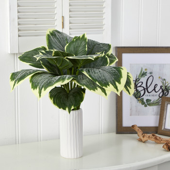 19 Variegated Hosta Artificial Plant in White Planter - SKU #P1536