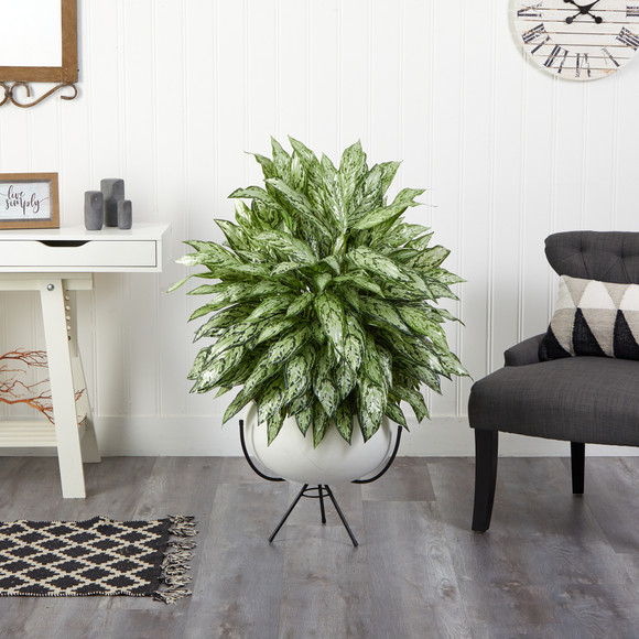 4 Silver Queen Artificial Plant in White Planter with Metal Stand - SKU #P1582 - 2