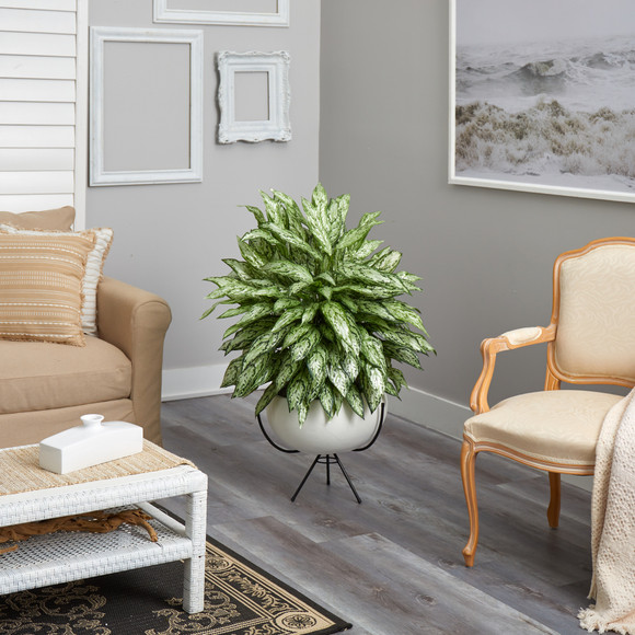 4 Silver Queen Artificial Plant in White Planter with Metal Stand - SKU #P1582 - 3