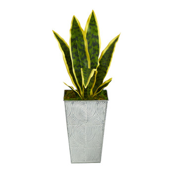 18 Sansevieria Artificial Plant in Embossed White Planter - SKU #P1589
