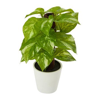 9 Pothos Artificial Plant in White Planter Real Touch - SKU #P1649