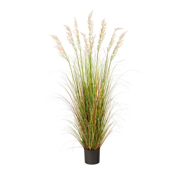 5.5 Plum Grass Artificial Plant - SKU #P1682